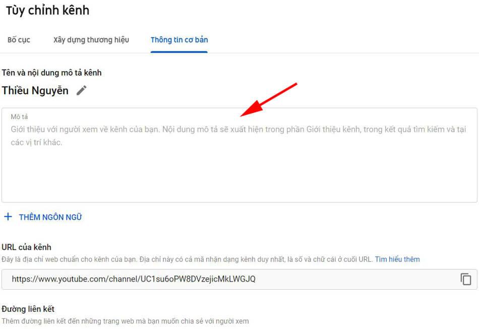 thong-tin-co-ban-kenh-youtube